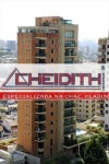 bairro chacara klabin cheidith imoveis apartamentos (194)
