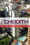 bairro chacara klabin cheidith imoveis apartamentos (396)